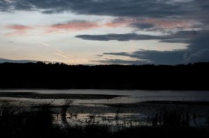 Abendstimmung über den See des Rodder Maars